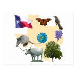 Symboles d'état du Texas Carte Postale