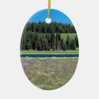 Szenen-Pelikan-Nebenfluss Yellowstone Wyoming Ovales Keramik Ornament
