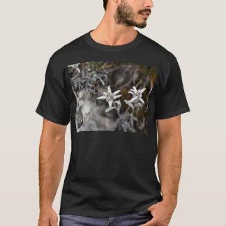 T-shirt Edelweiss alpin