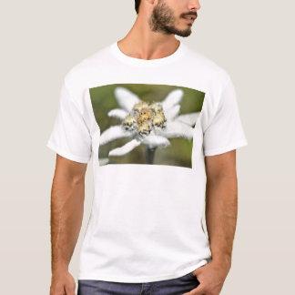 T-shirt Fleur alpine d'edelweiss
