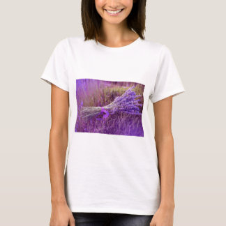 T-shirt Lavendel, Frauen