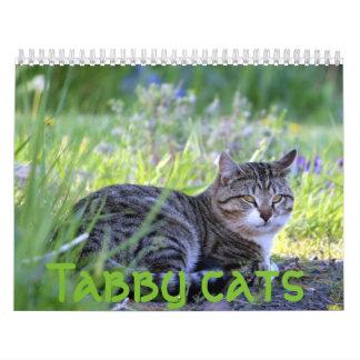 Tabbykatzen Abreißkalender