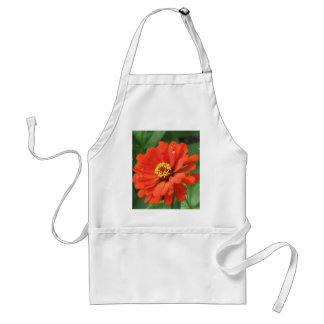 Tablier orange de fleur de Zinnia
