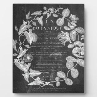 Tafel scripts französisches botanisches fotoplatte