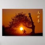Taichi (taiji), arbre cerisier soleil couchant poster