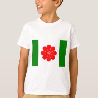 Taiwan-Unabhängigkeit Flag (1996) T-Shirt