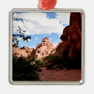 Tal des Feuers Nevada Quadratisches Silberfarbenes Ornament