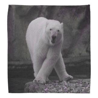 Tanzen-Eisbär Halstücher