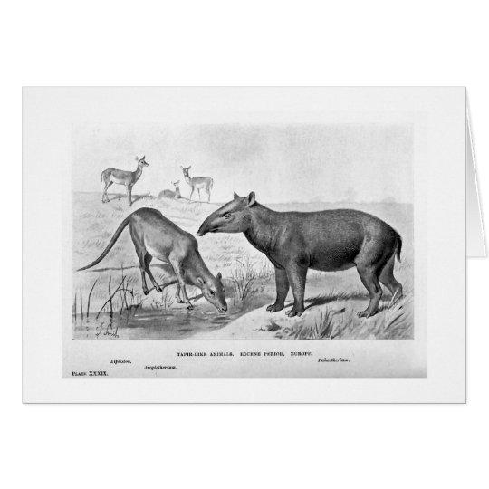 Tapir ähnliche Tierkunstkarte Grußkarte