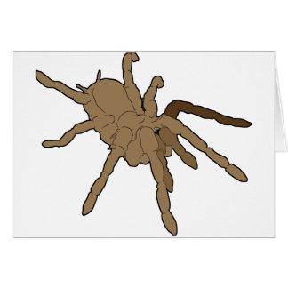 Tarantula-Gruß-Karten Karte