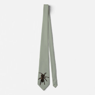 Tarantula Krawatte