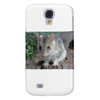 Tasmaniens Quoll Galaxy S4 Hülle
