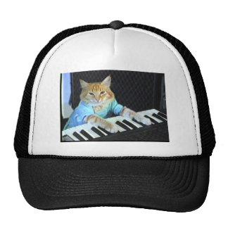 Tastatur-Katzen-Hut Kult Kappen