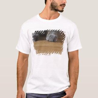 Tatzen der Katze T-Shirt