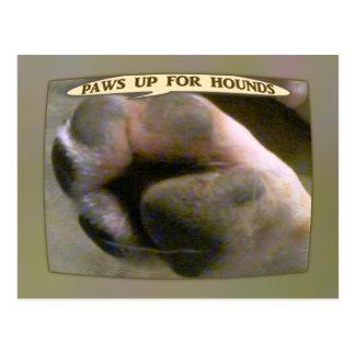 Tatzen oben für Jagdhunde Postkarte
