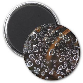 Tautropfen eines Spinnennetzes Runder Magnet 5,7 Cm