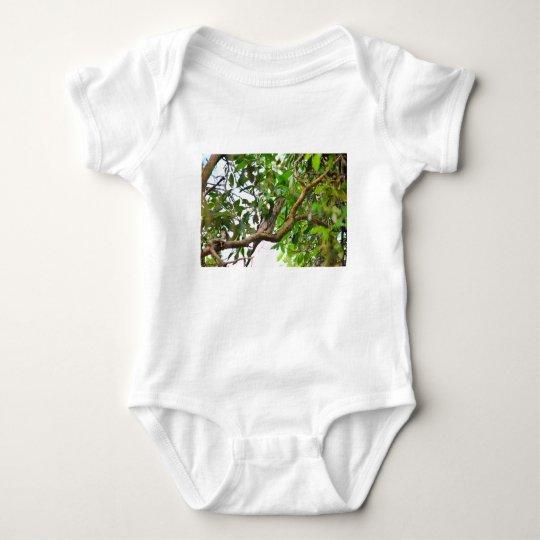 TAWNY FROGMOUTH QUEENSLAND AUSTRALIEN BABY STRAMPLER