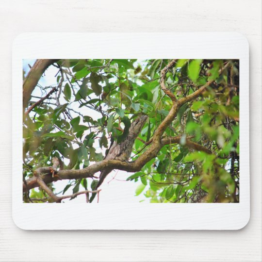 TAWNY FROGMOUTH QUEENSLAND AUSTRALIEN MOUSEPADS