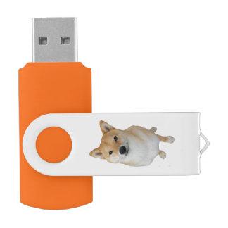 Team Barkley 16 GBs Schwenker USBs 3,0 USB Stick