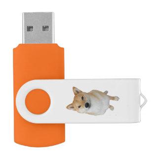 Team Barkley - 8 GBs Schwenker USBs 3,0 USB Stick