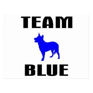 Team-Blau Postkarte