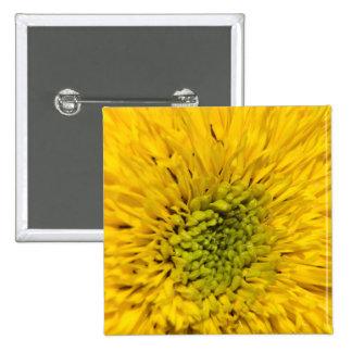 Teddybär-Sonnenblume-Knopf Quadratischer Button 5,1 Cm