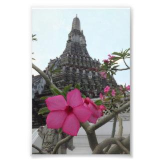 Temple de la fleur d'aube tirages photo