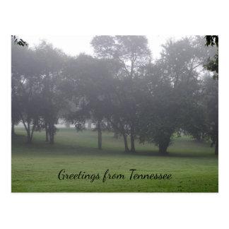 Tennessee morgens postkarte