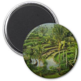 Terrasse Ricefield in Bali Runder Magnet 5,7 Cm