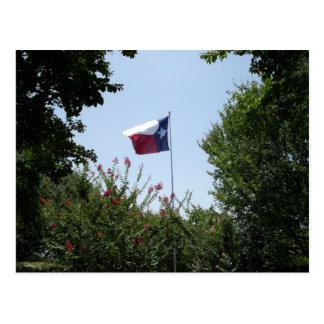Texas-Flaggen-Postkarte Postkarte