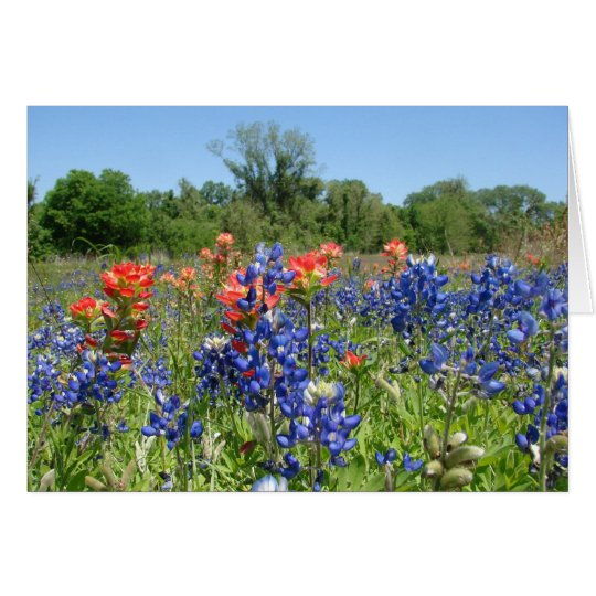TexasBluebonnet u. Malerpinsel Notecard Karte