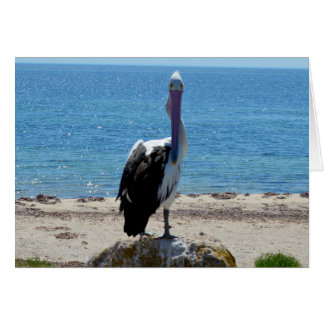 The_Look, _Pelican_Small_Birthday_Greeting_Card Karte
