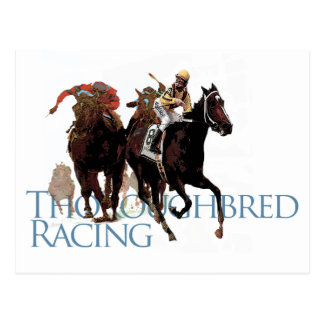 Thoroughbred-Pferderennen-Geschenke Postkarte