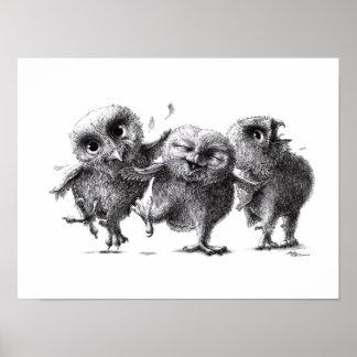 Three Crazy Owls - Eulen Poster
