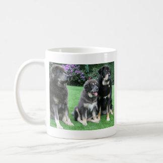Tibetanischer Mastiff-Welpe mit Erwachsenen Kaffeetasse