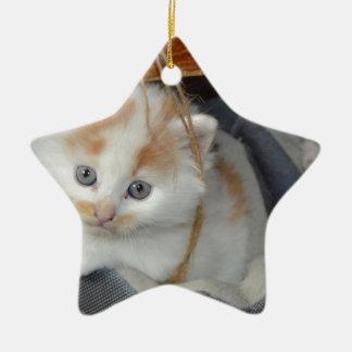 Tier-Pets niedlicher KätzchenKitty Katzen Keramik Stern-Ornament