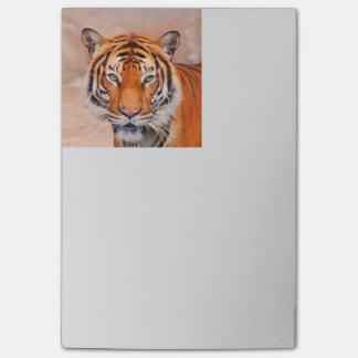 TierArtStudio 916B Tiger Post-it Klebezettel