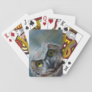 Tiervogel-Virginia-Uhu, der in der Nacht lugt Spielkarten