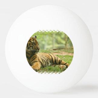 tiger-28 tischtennis ball