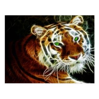 Tiger 3 postkarte