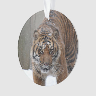 Tiger Damai Smithsonian | Sumatran Ornament