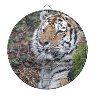 Tiger Dart-scheibe