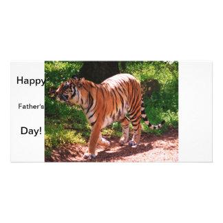 Tiger Individuelle Foto Karten