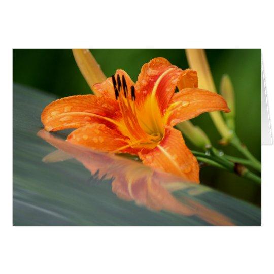 Tiger-Lilien-Reflexion Grußkarte