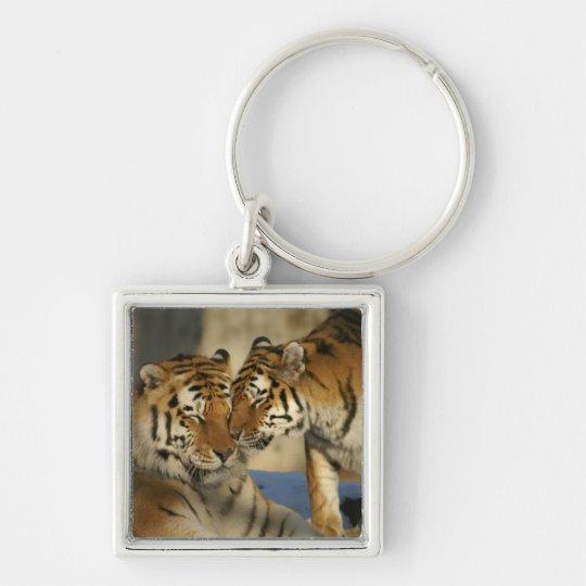 Tiger-Paare Silberfarbener Quadratischer Schlüsselanhänger