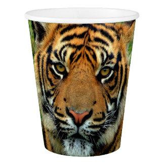 Tiger-Papierschalen Pappbecher