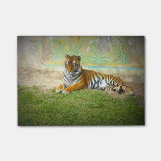 Tiger Post-it Klebezettel
