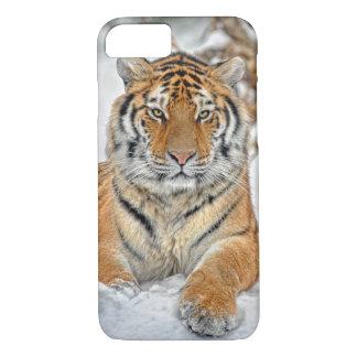 Tiger-Schönheit im Schnee iPhone 8/7 Hülle