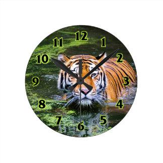 Tiger-Schwimmen Runde Wanduhr