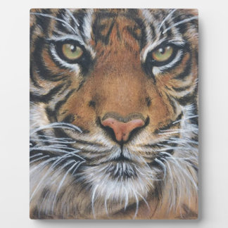 Tiger-Tier-Tierkunst Fotoplatte